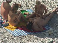 Two naked tanned couples have fun on a shingle beach