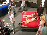 Sexy Porn Stars All Out Orgy