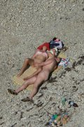 Overheated beach nudists sunbathing and feeling up